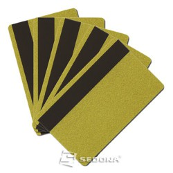 Pachet 100 carduri plastic color cu banda magnetica