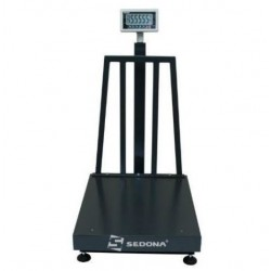 Platform scales Desis CW-M 300/550 kg 60x70cm